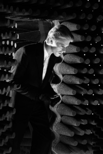 Bowie (The Man who Fell to Earth)