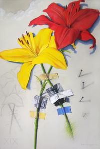 Wall Flower 19