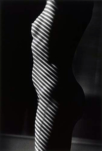 Untitled (Nude Through Blinds, Palm Beach)