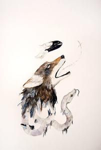 Trinity Coyote