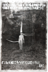 Odd Man in the Woods
