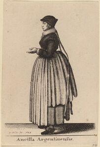 Ancilla Argentinensis