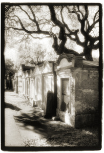 Lafayette I, Tombs with Oak