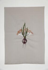 A quimera das plantas [O shimeji e a cebola rôxa]