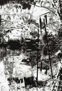 Vertical Swamp Nr. 2
