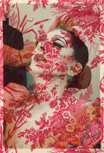 Marina Abramović Make-Up Basel (on vintage red peacock toile)