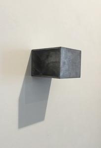 Untitled (Bonsai)