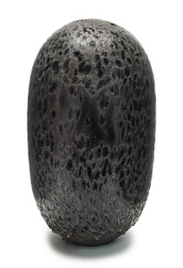 COSMIC EGG (BLACK GRAINS)