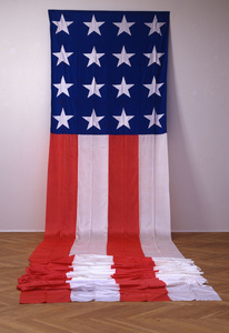 """""""The American Flag"""""""