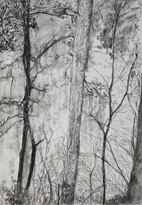 """Sin título, de la serie """"Boceto para la construcción de un paisaje. La Laguna de Zempoala 1965/2010"""