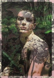 Dan Jalba Face and Torso Vienna (on purple and grey tree toile)