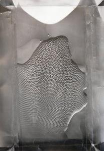 Skin-tray (phonogram)