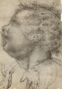 Head of a Child, an Angel and a Hand (recto), Male Figure (verso)