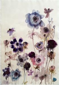 Anemones 8