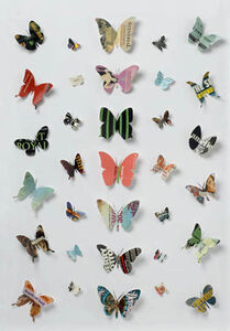 Book Butterfly