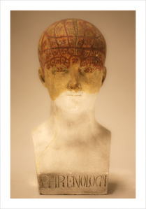 Female Phrenology Bust (Courtesy of the Musee de l'Homme (Musee National d'Histoire Naturelle), Paris)