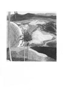 Sienese Variations Series