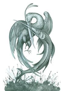Symbiosis 4