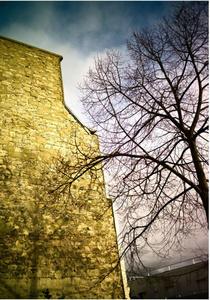 Winter Light, Promenade Plantee