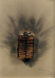 Combustion D'Allumettes