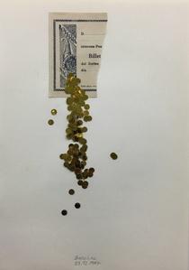 S/ T (Oro)