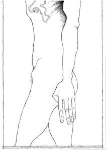 Figure (lower body)