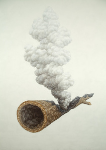 Smoking Log