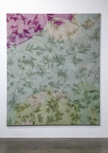 Untitled (Pomona, CA, Lilies 2)