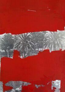 Cancellature rosso scarlatto (le palme di Luca)