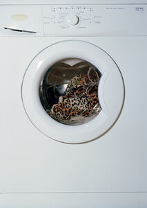 Washing Machine with Leopard