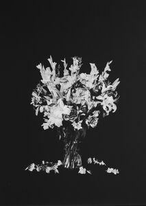 Vase No.2 [瓶花2]