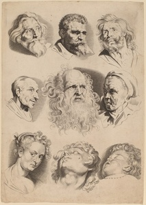 Nine Heads