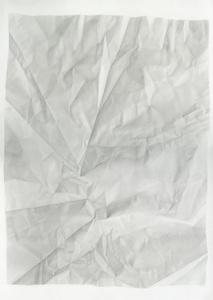Birthday Tequila (Verso Vertical Flip)