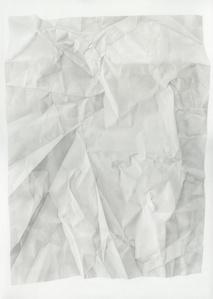 Birthday Tequila (Verso Vertical Flip Reverse Light)