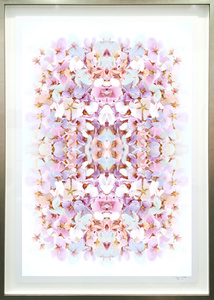 Cherry Blossom Series V