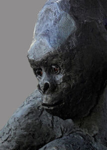 Rain Forest Mountain Gorilla
