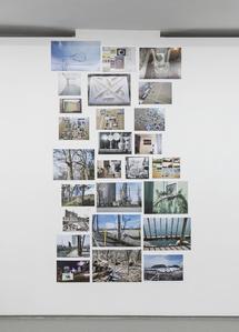 digital photographs