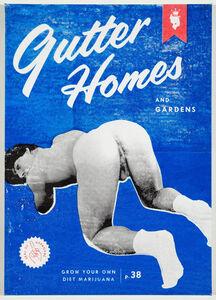 Gutter Homes