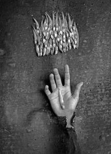 Solo tú cabes en la palma de mi mano