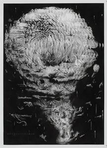 Chrysantemum II