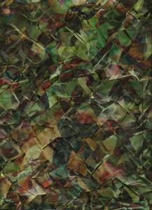 Composite (Jungle)