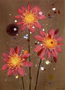 Anemone-Flowered Dahlia Siemen Doorenbos