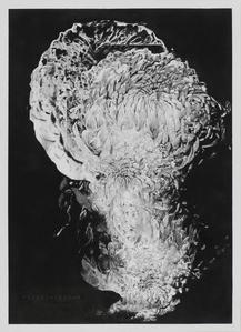 Chrysanthemum III (de la série Hanabi)