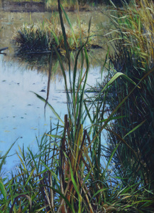 Symphony of the Wetlands