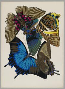 Butterfly Pochoir 01