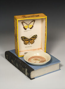 Still Life with Moth and Butterflies