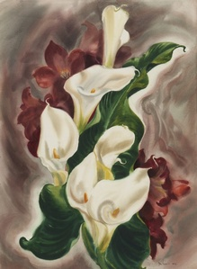 Callas and Amaryllis