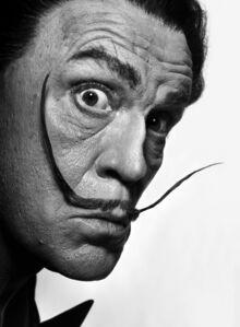 Philippe Halsman / Salvador Dali (1954)