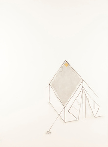 """Untitled, From """"Os Touros de Mary Foster"""" series"""