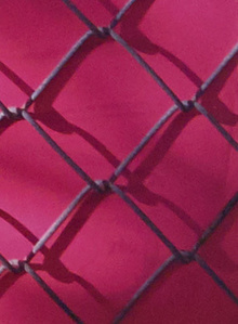 Untitled (Pink Fence)